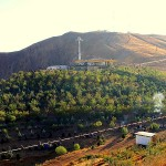 Eynali artificial forest in north of the Tabriz.