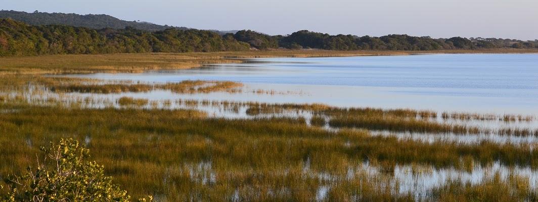 پارک تالاب ایسیمانگالیسو iSimangaliso Wetland Park