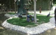 Birds Garden of Isfahan