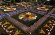 Flower Garden of Isfahan