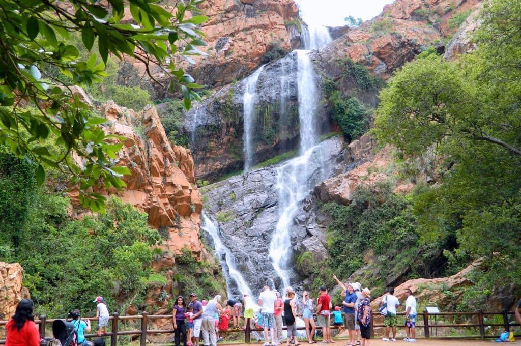 باغ ملی گیاه شناسی والتر سیسولو Walter Sisulu National Botanical Garden
