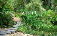باغ گیاه شناسی دانشگاه استلنبوش Stellenbosch University Botanical Garden