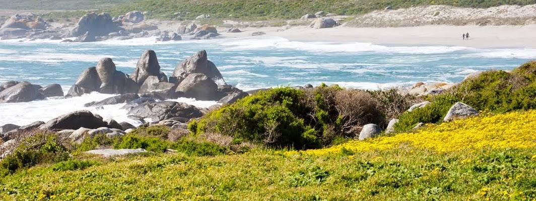 پارک ملی وست کوست West Coast National Park